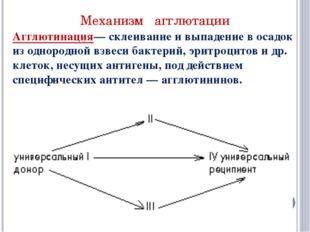 Механизм агглютации Агглютинация— склеивание и выпадение в осадок из однородн
