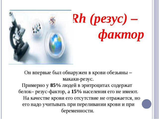 Rh (резус) – фактор Он впервые был обнаружен в крови обезьяны – макаки-резус...