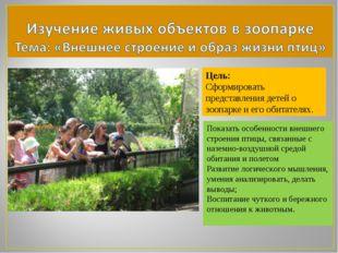 Цель: Сформировать представления детей о зоопарке и его обитателях. Показать