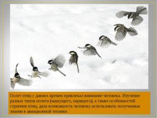 Полет птиц с давних времен привлекал внимание человека. Изучение разных типов