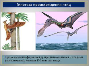 Промежуточная форма между пресмыкающимися и птицами (археоптерикс), жившая 15