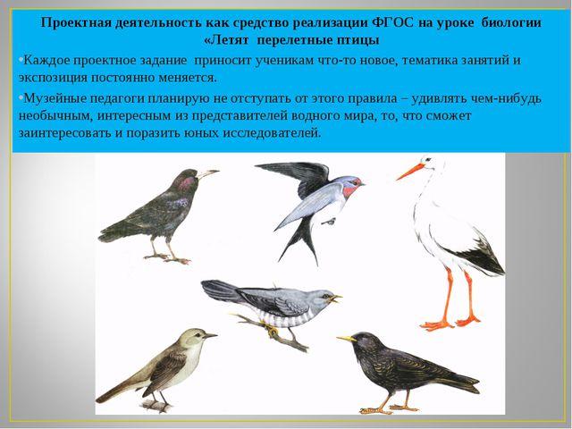Проектная деятельность как средство реализации ФГОС на уроке биологии «Летят...