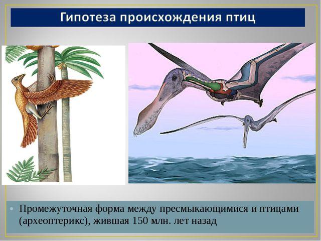Промежуточная форма между пресмыкающимися и птицами (археоптерикс), жившая 15...