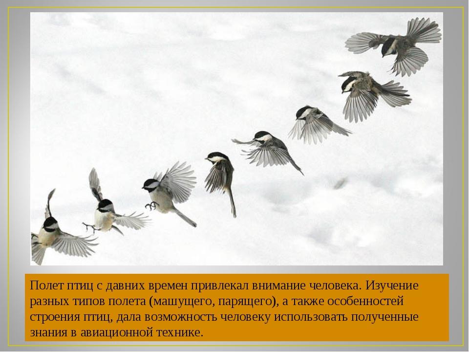 Полет птиц с давних времен привлекал внимание человека. Изучение разных типов...