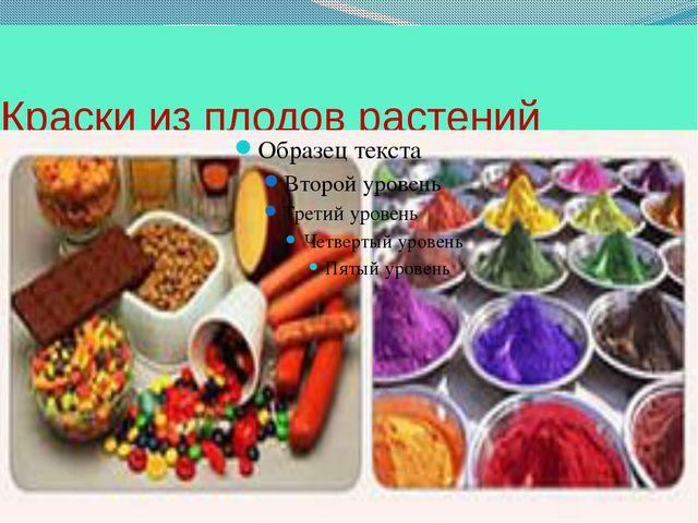 Краски из плодов растений