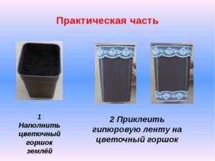 Практическая часть 1 Наполнить цветочный горшок землёй 2 Приклеить гипюровую