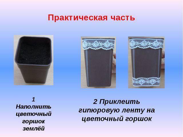 Практическая часть 1 Наполнить цветочный горшок землёй 2 Приклеить гипюровую...