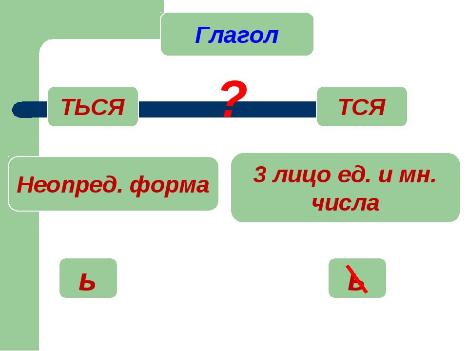 Глагол ТСЯ ТЬСЯ ? Неопред. форма 3 лицо ед. и мн. числа ь ь