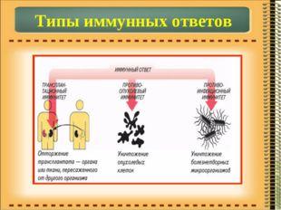 Типы иммунных ответов