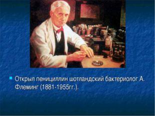 Открыл пенициллин шотландский бактериолог А. Флеминг (1881-1955гг.).