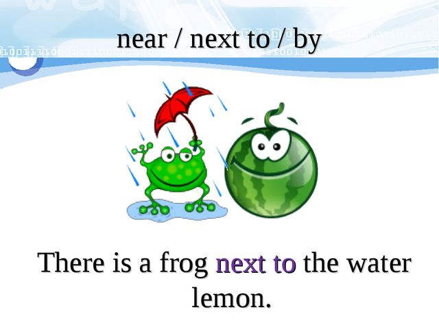 There is a frog next to the water lemon. near / next to / by