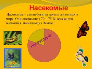 Насекомые насекомые Насекомые – самая богатая группа животных в мире. Они со