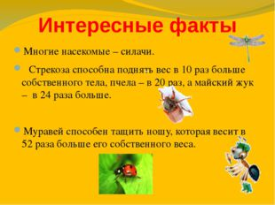 Интересные факты Многие насекомые – силачи. Стрекоза способна поднять вес в