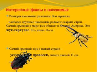 Интересные факты о насекомых Размеры насекомых различны. Как правило, наиболе