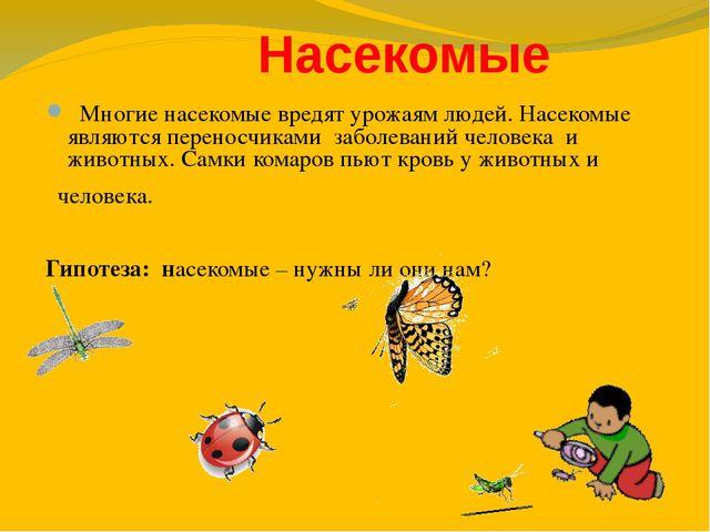 Насекомые Многие насекомые вредят урожаям людей. Насекомые являются переносч...