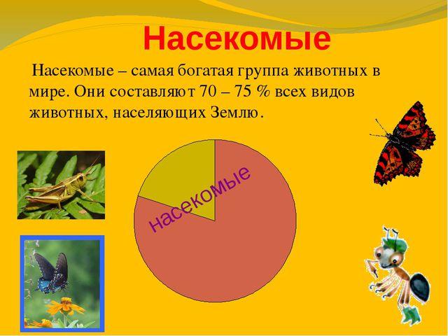 Насекомые насекомые Насекомые – самая богатая группа животных в мире. Они со...