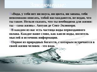 Заключение: «Вода, у тебя нет ни вкуса, ни цвета, ни запаха, тебя невозможно
