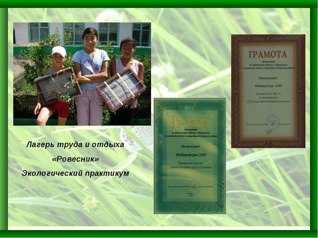 Лагерь труда и отдыха «Ровесник» Экологический практикум