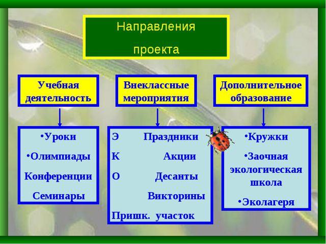 Направления проекта Внеклассные мероприятия Учебная деятельность Дополнительн...