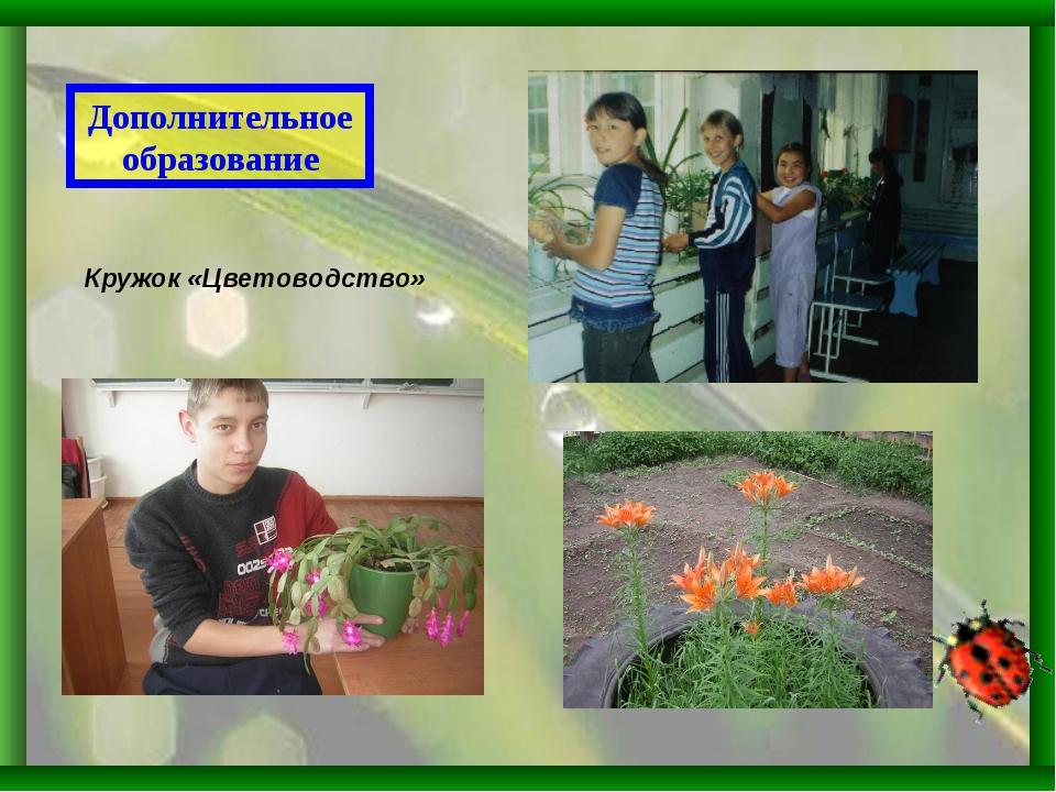 Дополнительное образование Кружок «Цветоводство»