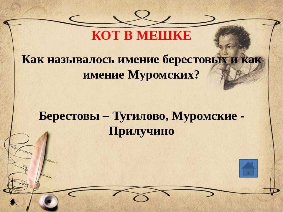 СВОЯ ИГРА «Приезжий в черкесской шапке, в военной шинели. Окутанный шалью ,...