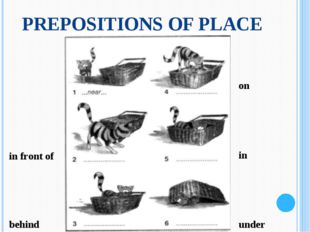PREPOSITIONS OF PLACE in front of behind on in under