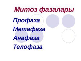 Митоз фазалары Профаза Метафаза Анафаза Телофаза