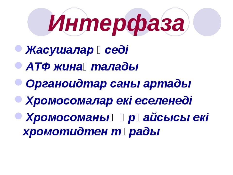 Интерфаза Жасушалар өседі АТФ жинақталады Органоидтар саны артады Хромосомала...