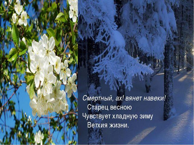 Смертный, ах! вянет навеки! Старец весною Чувствует хладную зиму Ветхия жизни.