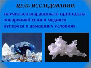 ЦЕЛЬ ИССЛЕДОВАНИЯ: научиться выращивать кристаллы поваренной соли и медного к