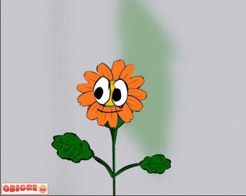 мультцветок