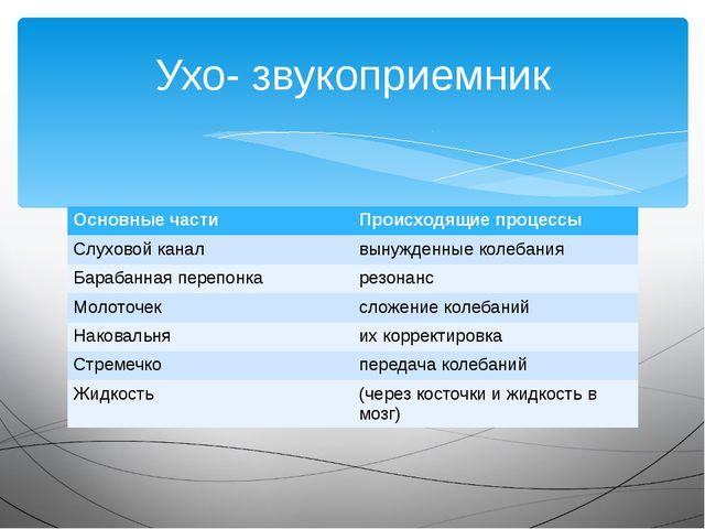 Ухо- звукоприемник Основные части Происходящие процессы Слуховой канал вынужд...