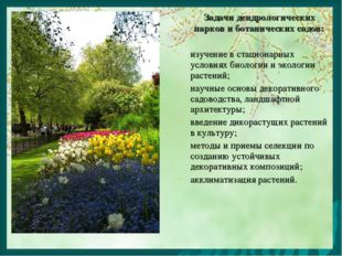 Задачи дендрологических парков и ботанических садов: изучение в стационарных