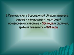 В Красную книгу Воронежской области занесены редкие и находящиеся под угрозой
