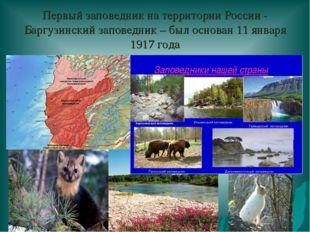 Первый заповедник на территории России - Баргузинский заповедник – был основа