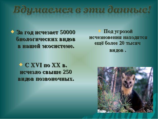 За год исчезает 50000 биологических видов в нашей экосистеме. С ХVI по XX в....