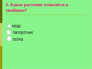 3. Какое растение относится к хвойным? кедр папоротник осока