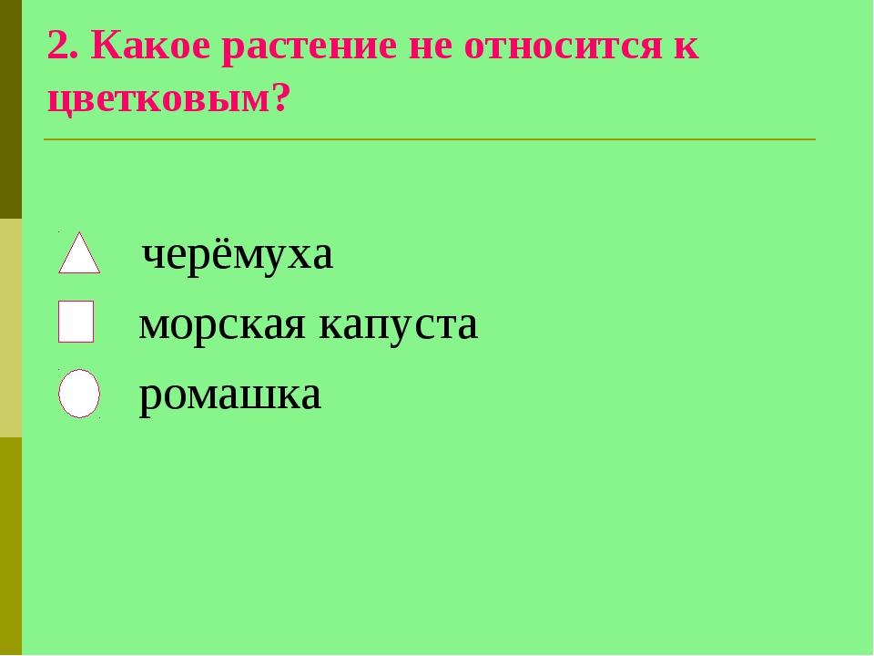 2. Какое растение не относится к цветковым? черёмуха морская капуста ромашка