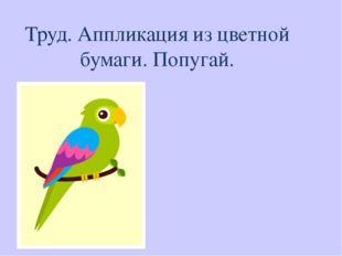 Труд. Аппликация из цветной бумаги. Попугай.