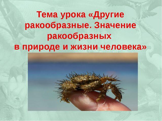 Тема урока «Другие ракообразные. Значение ракообразных в природе и жизни чел...