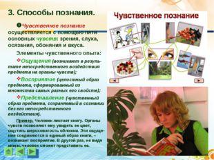 3. Способы познания. Чувственное познание осуществляется с помощью пяти основ