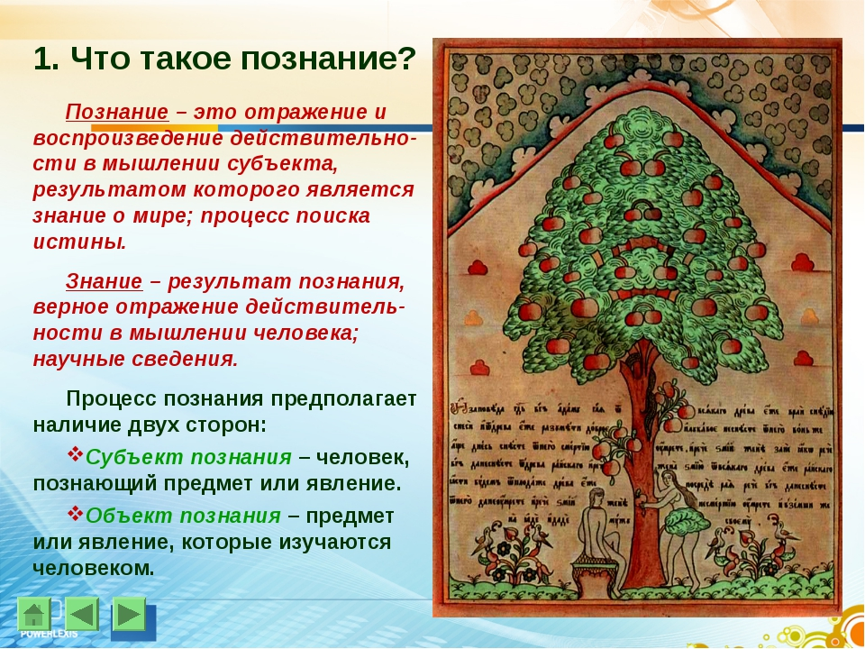 1. Что такое познание? Познание – это отражение и воспроизведение действитель...