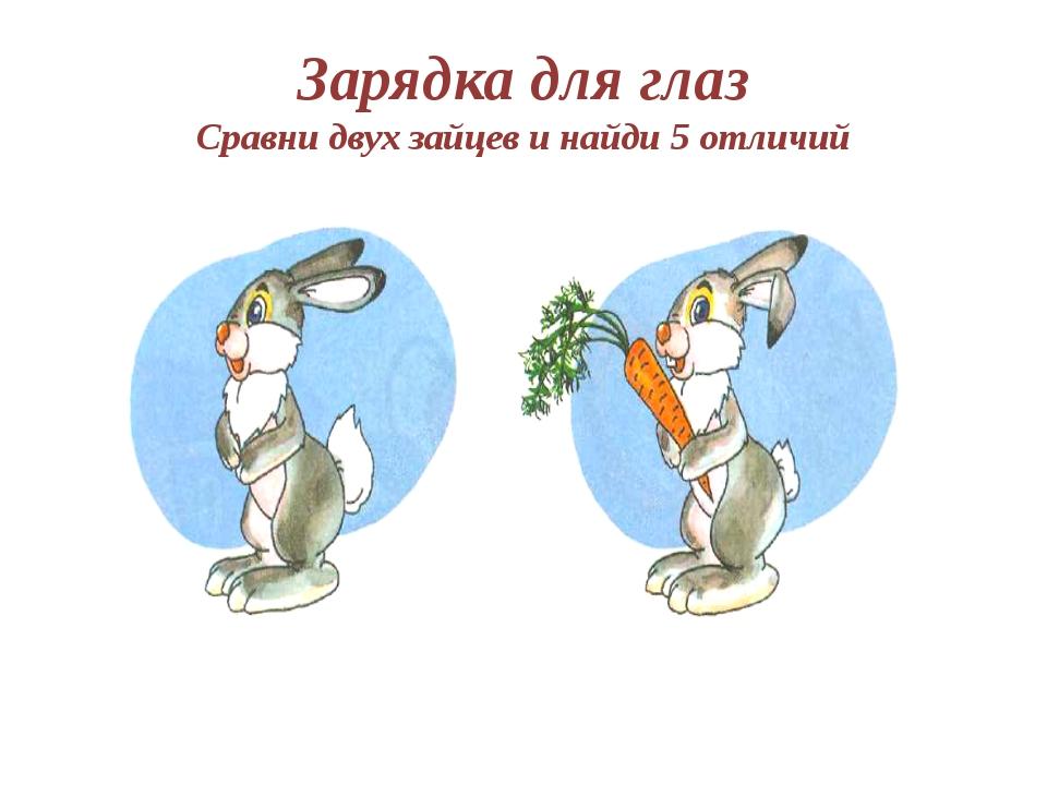 Две картинки с зайцем отличия