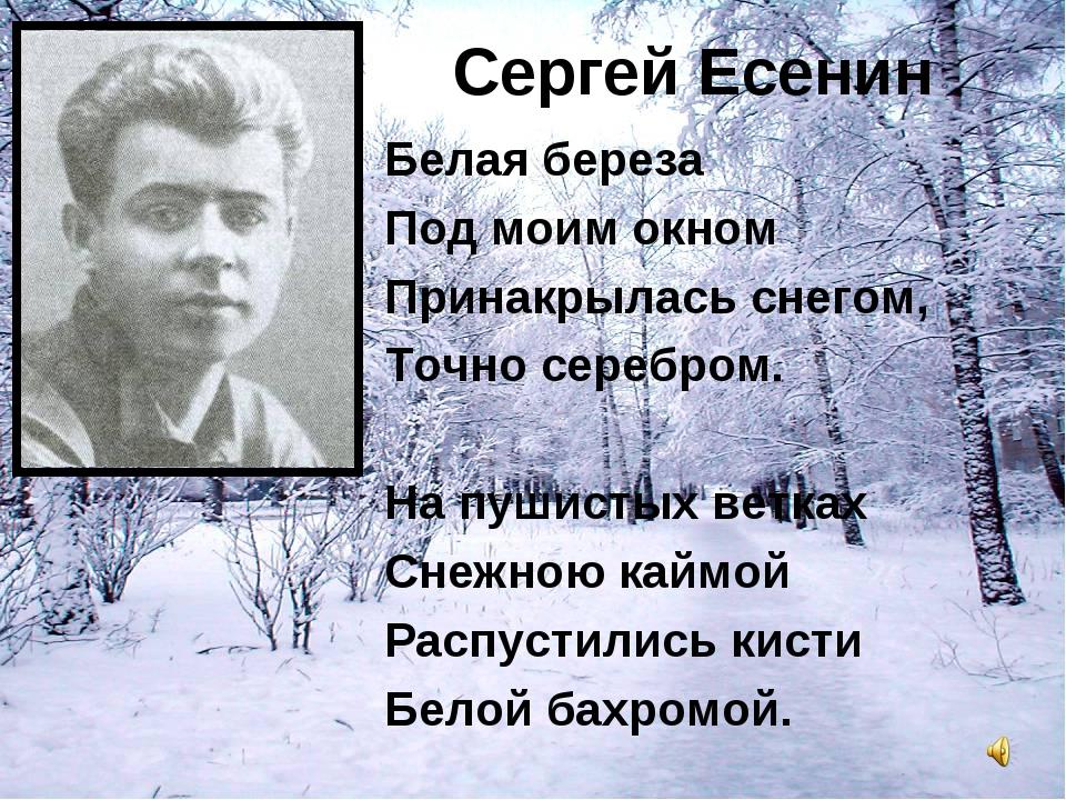 Сергей Есенин Белая береза Под моим окном Принакрылась снегом, Точно серебром...