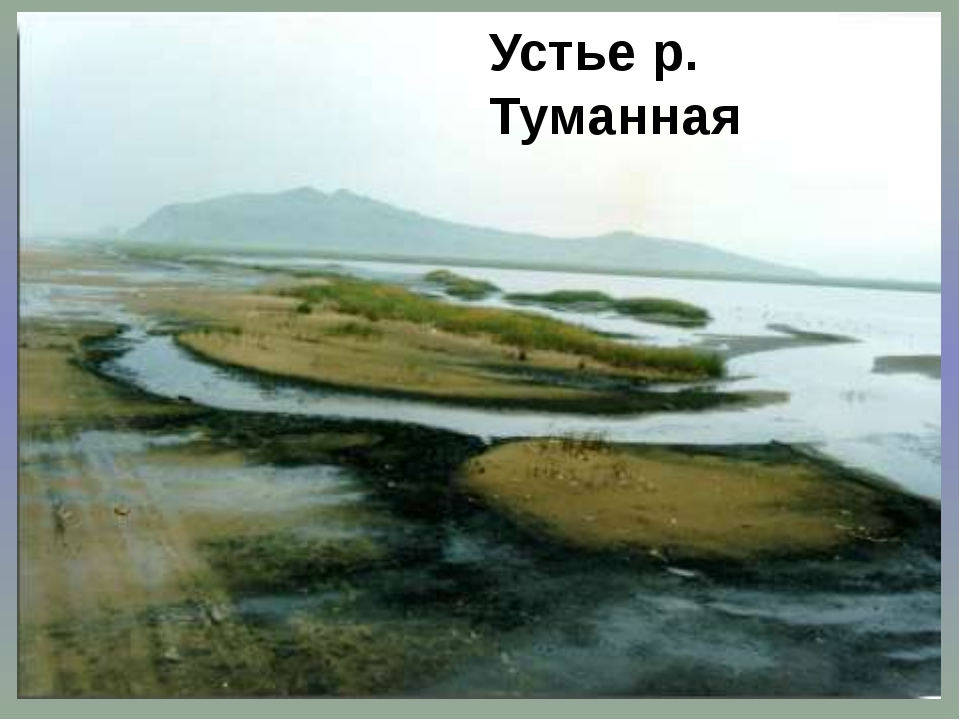 Устье р. Туманная