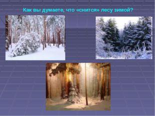 Как вы думаете, что «снится» лесу зимой?