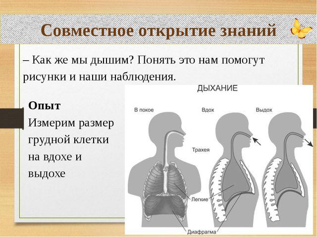 Совместное открытие знаний – Как же мы дышим? Понять это нам помогут рисунки...