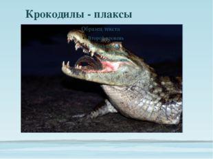Крокодилы - плаксы