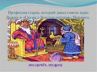 Профессия старца, который давал советы царю Дадону в «Сказке о Золотом петушк