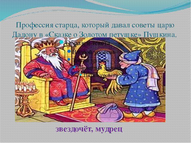 Профессия старца, который давал советы царю Дадону в «Сказке о Золотом петушк...
